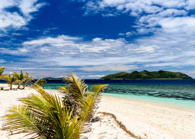 Beach Blue Cloud - Sky Day Horizon Over Water Nature Outdoors Palm Tree Paradise Sand Scenics Sea Sky Tranquil Scene Tranquility Tropical Climate Turquoise Vacations Water