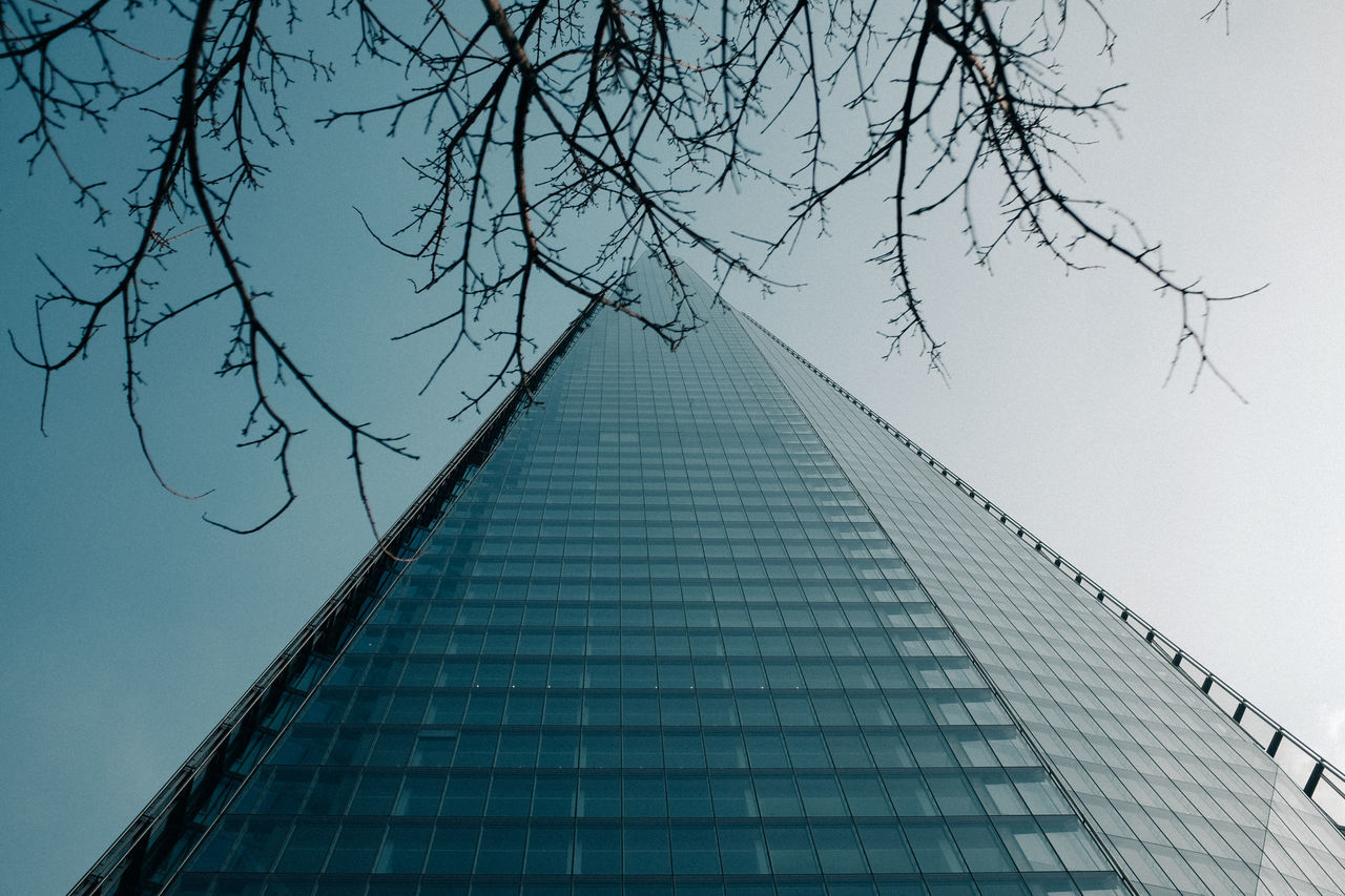 architecture, built structure, low angle view, building exterior, outdoors, day, modern, no people, tree, tall, city, clear sky, skyscraper, bare tree, sky