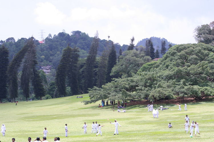Group of people playing cricket on landscape