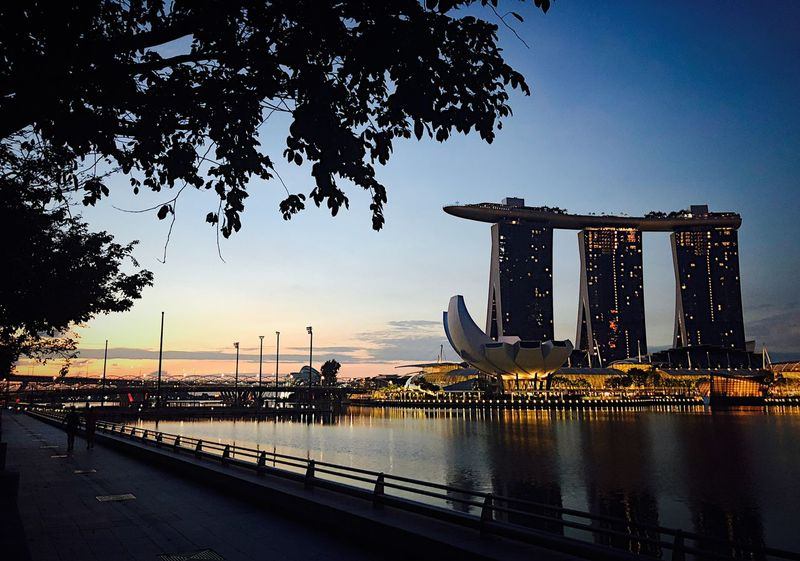 Singapore Morning Water Sky Nature Architecture Built Structure Tree Sunset