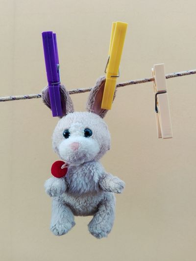 Close-Up Of Stuffed Toy Hanging On Clothesline