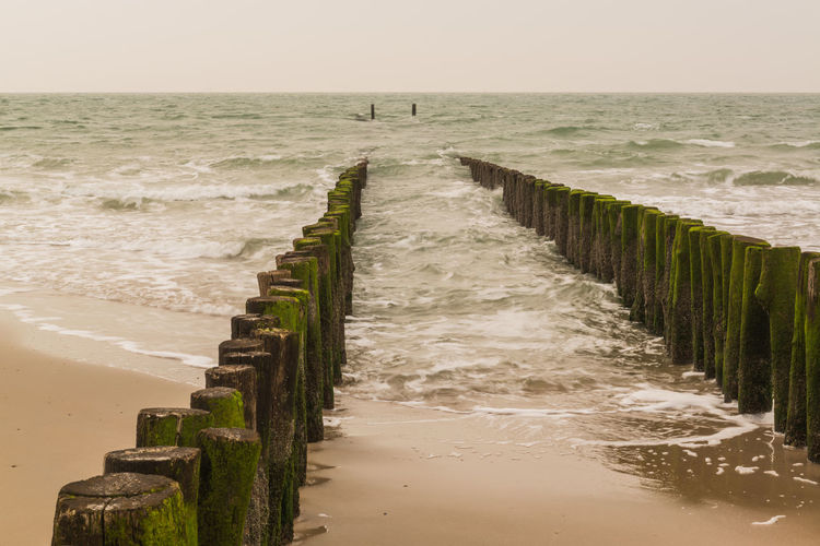 Wooden posts in row on shore