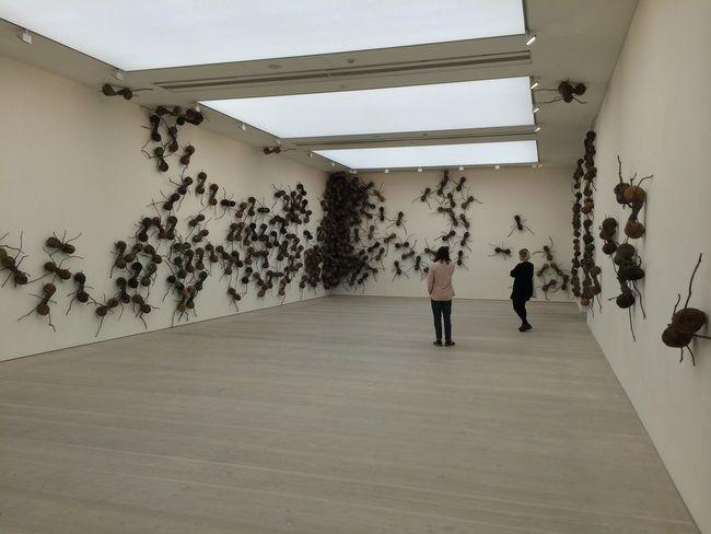 Animal Themes Art Art Gallery Gallery Indoors  London Only Women People Saatchi Gallery Saatchigallery Standing