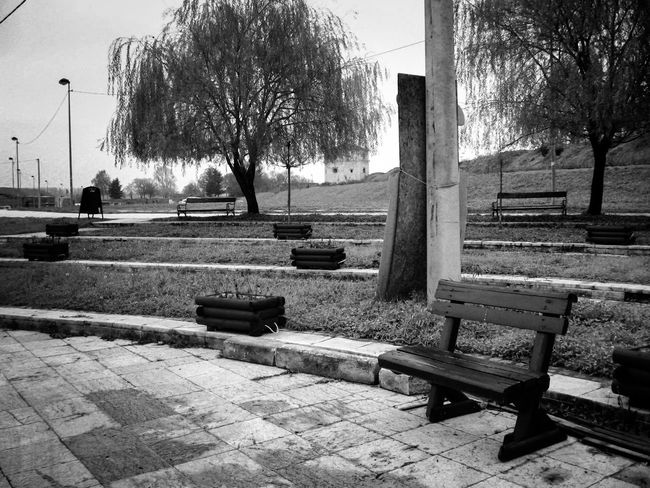 Bench Blackandwhite Citynature Empty Flowerbeds Lonely No People Park Tree Walkway