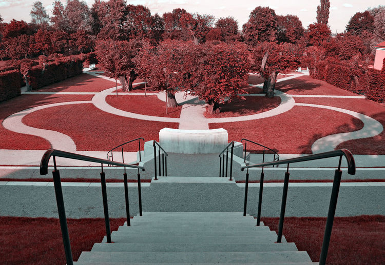 Color Filter Stairway Day Garden Nature No People Outdoors Tree