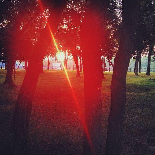 солнце пиздец какое Красное