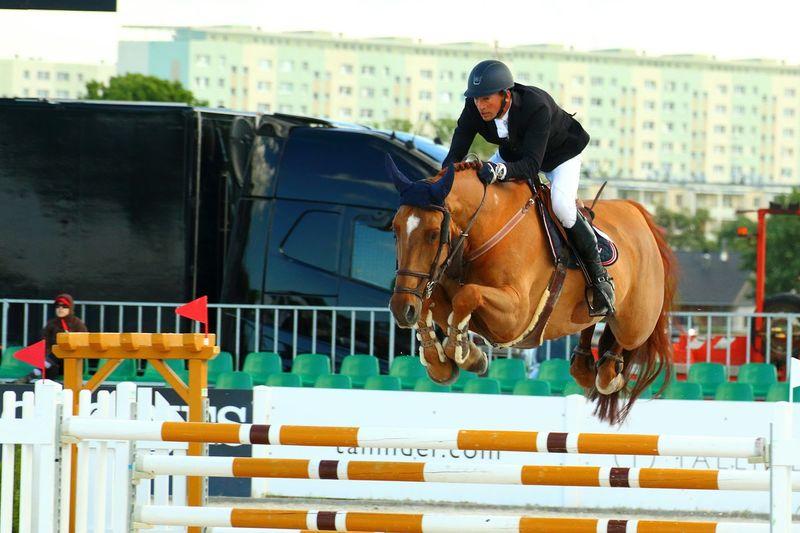 Horse Photography  Horseriding Horsejumping CSIO2016 Sopotcsio Sopot brownhorse Canonphotography poland Canon 70d canon18135nanousm Jokey