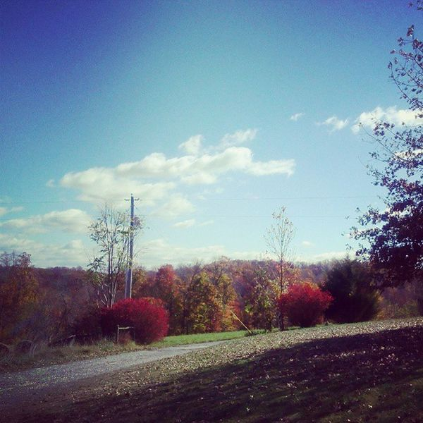 Beautiful Outdoors Country IntheCountry Tennessee backwoods farm woods backroads backroad hills view
