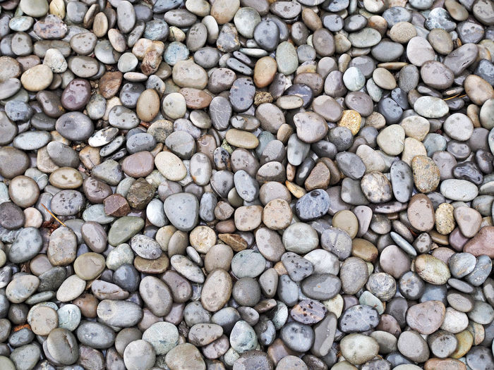 Ground with small round stone (小さな丸石が敷かれた地面) Ad Copy Space Nara,Japan Background Background Material Black Color Brown Close-up Cobble Stone Gray Ground Landscape Margin Material Nature No People No Person Nobody Outdoors Pebbles Rock Stone Text Space White 背景