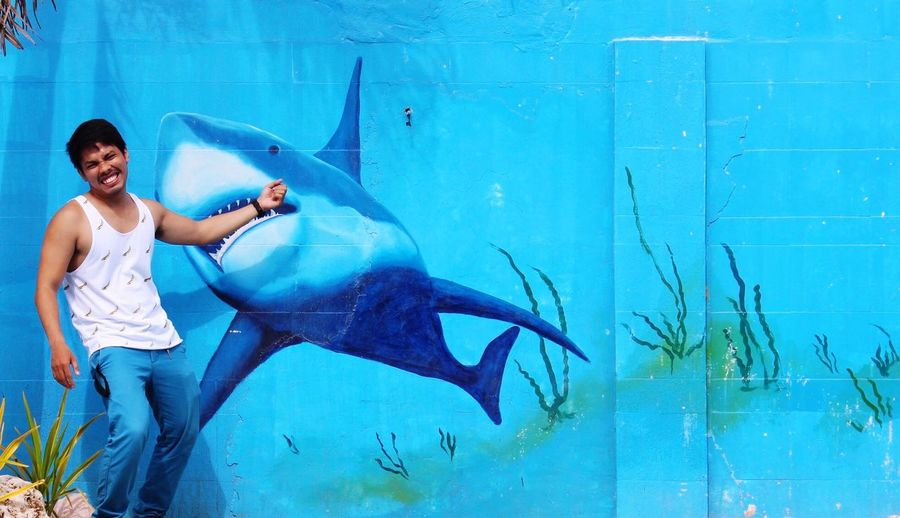 People And Places Mural Shark Attack The Shallows Funny Funny Guy