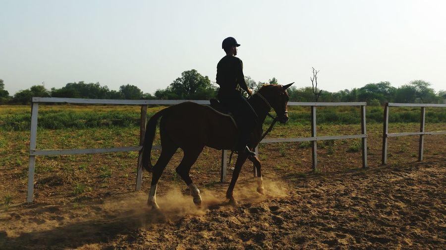 Let's Race Only Men Summer Fun Horseriding Mensstyle