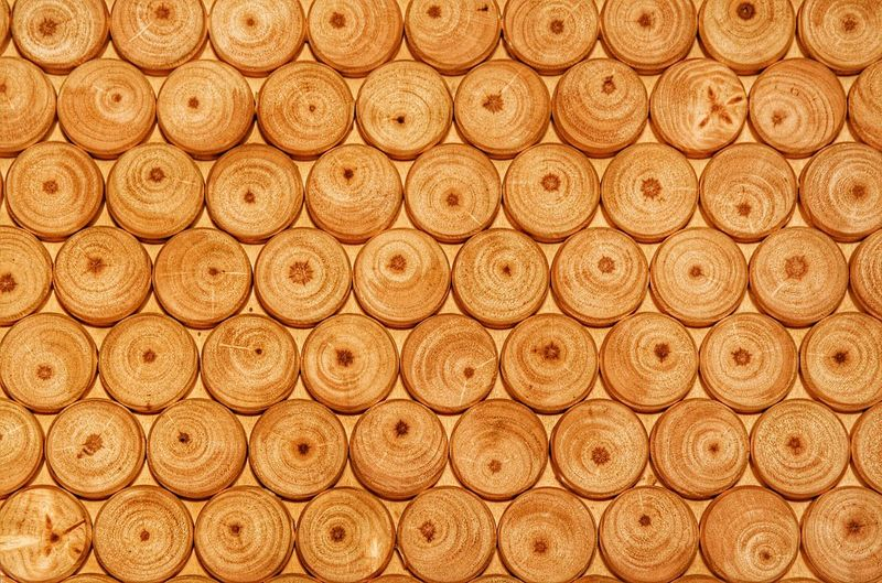 Texture Background My Point Of View Pattern Backgrounds Wood Wood Texture Nature Textures Eyeemphotography Structure Structure And Nature Abstract Abstract Backgrounds Pattern, Texture, Shape And Form Beautifully Organized