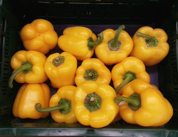 At the market Freshness Food And Drink Healthy Eating Yellow Food Close-up Ready-to-eat Yellow Peppers Yellow Pepper Pimientos Pimiento Amarillo Vegetables Pepper Peppers Pimiento Hortalizas Vegetarian Food In A Box