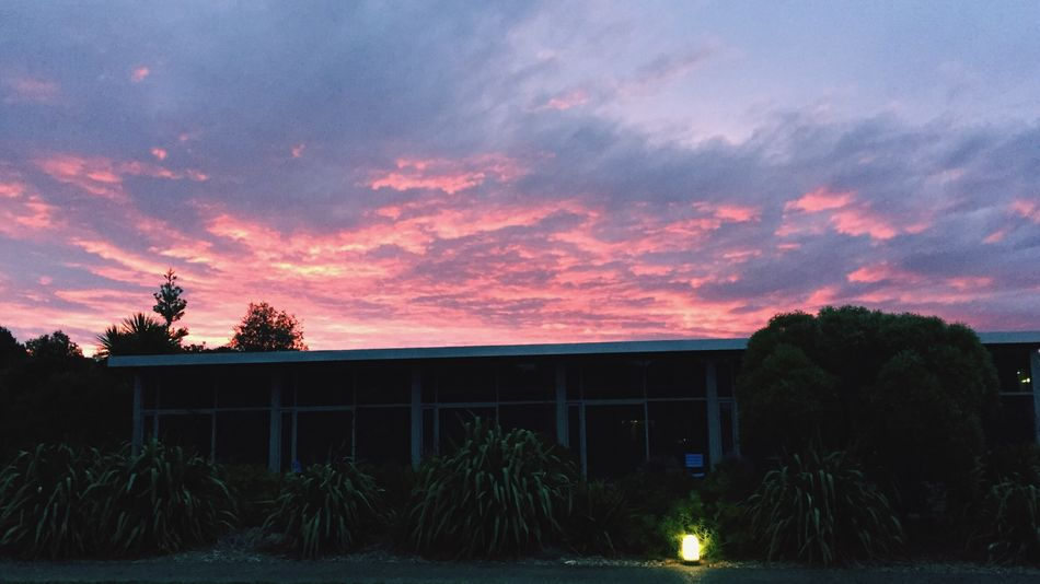 Sunset in New Zealand Tree Sunset Sky Nature No People Cloud - Sky Outdoors Beauty In Nature Building Exterior Scenics Architecture Day
