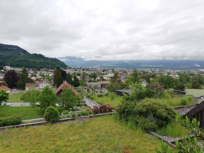 Aussicht auf Steffisbjurg Church Switzerland View Panoramic Tree Residential Building Sky Building Exterior Grass Cloud - Sky Landscape Architecture Settlement TOWNSCAPE Residential District Housing Settlement Terraced Field Cityscape Residential Structure