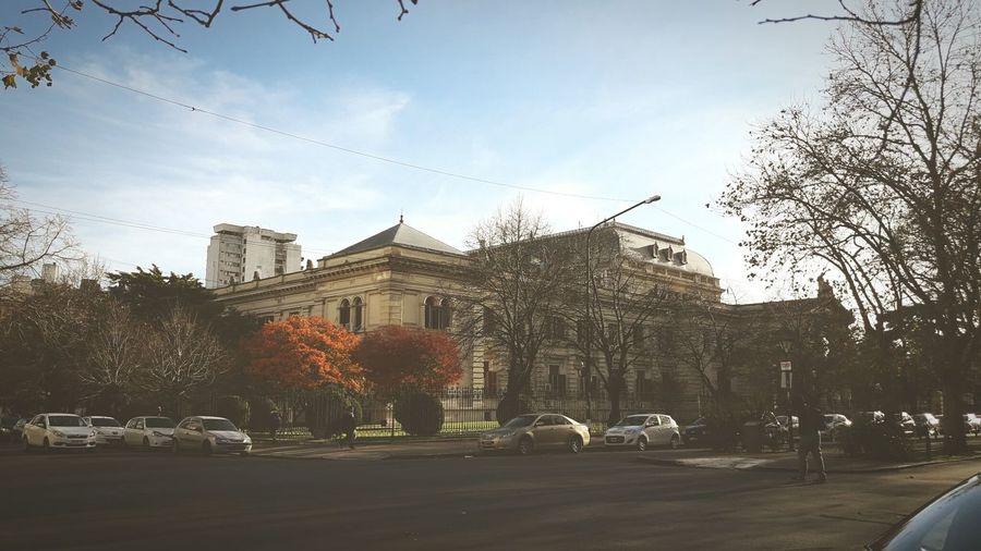 La Plata La Plata, Buenos Aires Otoño 🍁 Autumn Colors Otoño Hojas Secas EyeEm Selects