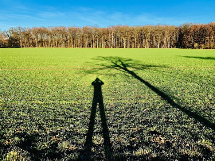 Winter Schattenspiel  Bennemühlen Wedemark Plant Shadow Land Sky Field Sunlight Nature Landscape No People Agriculture Beauty In Nature Tree Green Color