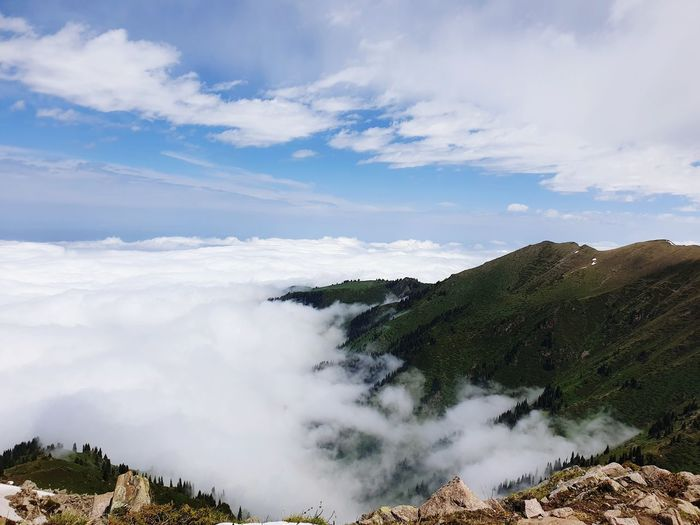 higher than clouds Natural Nature Clouds Mountain Peak Mountain Collection Mountain And Clouds Tree Mountain Forest Water Pinaceae Pine Tree Blue Sky Landscape Cloud - Sky