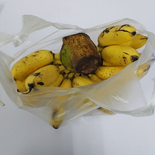 Food And Drink Food Indoors  Yellow Healthy Eating No People Fruit Freshness Close-up Day Banana กล้วยไข่ Plastic Bag Ready-to-eat