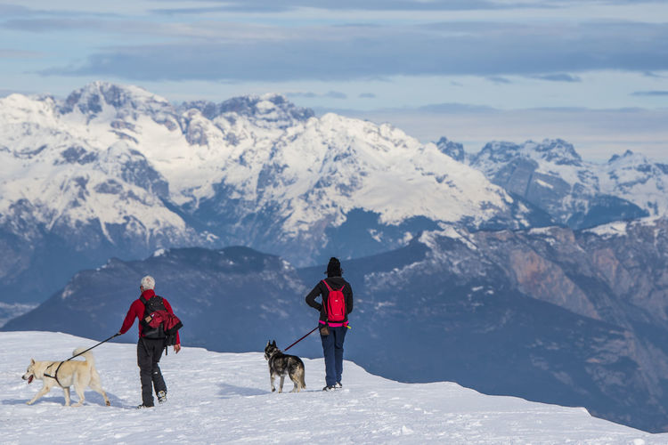 Adventure Dogs Hiking Travel View Winter Adventure Climbing Cold Cold Temperature Dog Italian Alps Italy Mountain Mountain Range Mountains Outdoors People Pet Pets Sky Snow Walking Winter