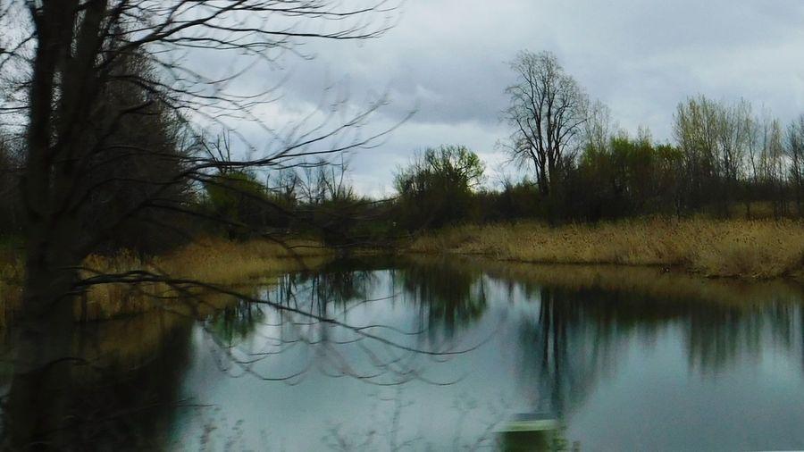 Photo prise le 9 Mai 2017 dans le Canal Soulange Reflection Tree Water Nature Landscape Sky Outdoors No People Bare Tree Reflection Canal Soulange Beauty In Nature Photo♡ Printemps 2017 Mes Photos Printemps 🌼 PhotosophLav Beauty In Nature