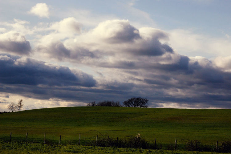 Beauty In Nature Cloud - Sky Clouds And Sky Cloudy Day Grass Grassy Green Green Color Horizon Over Land Landscape Nature Non-urban Scene Rural Scene Sky Tranquil Scene Tranquility