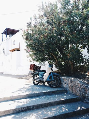 Taking Photos Holiday Nature Traveling Travel Greece Rhodes Summer Summertime Taking Photos Moped Vehicle Postcard Greek Islands