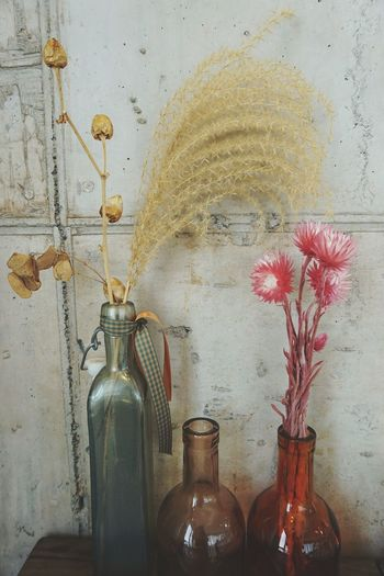 like a painting Dried Flowers Cafe Decor Floral Vintage Interior Style Concrete Wall Soft Flower Contrasting Textures