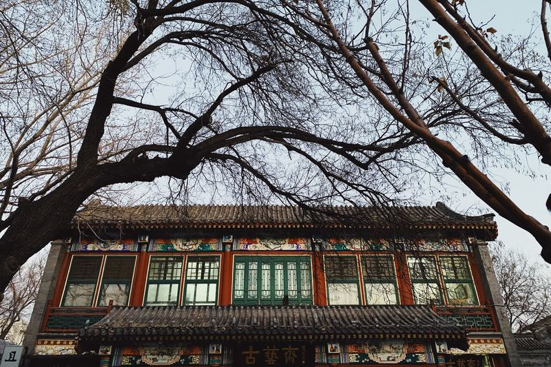 Oldbuilding Architecture Tree Built Structure Building Exterior Low Angle View Plant Building