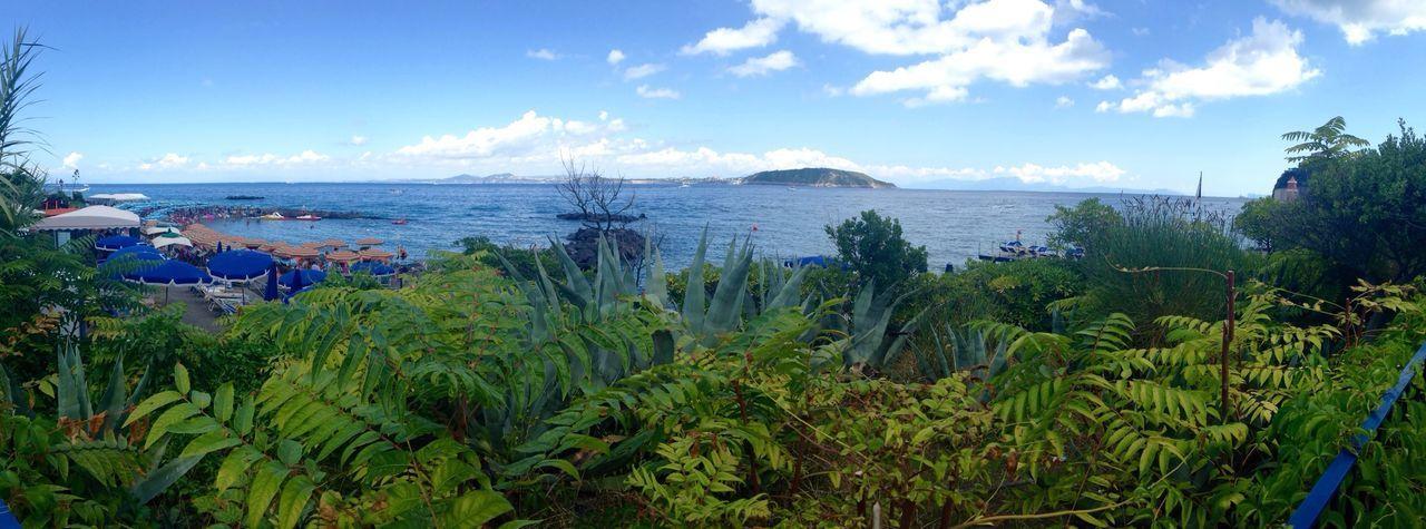 Ischia Italia Island