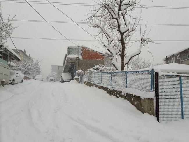 Mevsim Mevsimi Mevsiminde Kış Kar Yüzey Mevsimler Mevsimlerden Kis Mevsimi ...