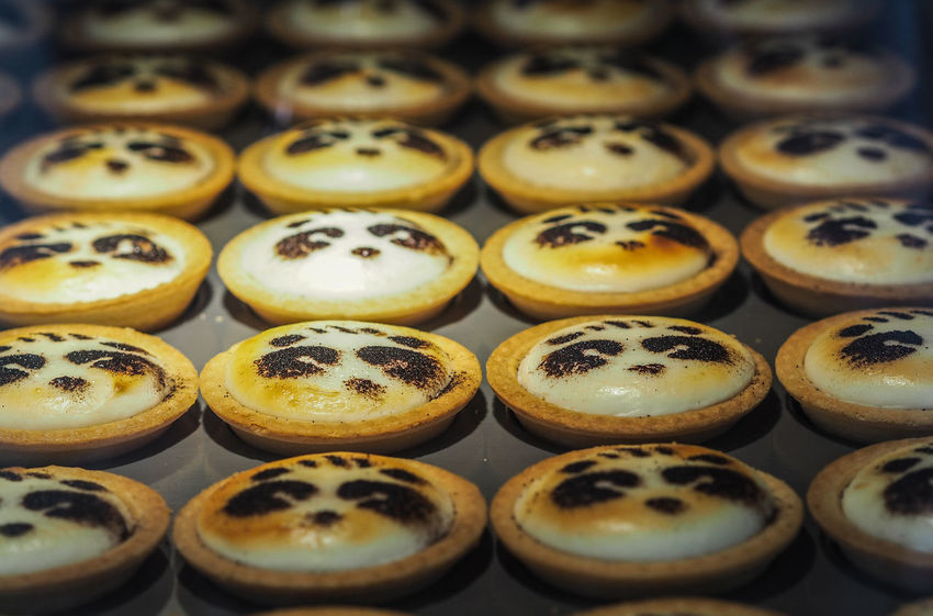 Panda cakes Shanghai Bakery China Food Cutness French Concession Area Shanghai Panda Panda Cake Yummy