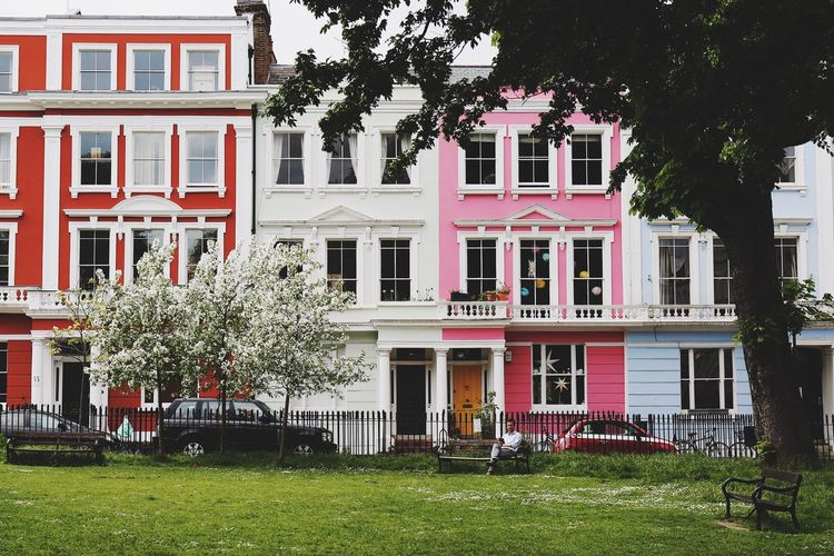 United colours of Primrose Hill Architecture Building Exterior Tree City Grass Outdoors Day Primrose Hill Colourful House Facade Bench Private Garden Sunny Day Pink Houses Red White Blossom Tree Built Structure London Life Miles Away EyeEmNewHere