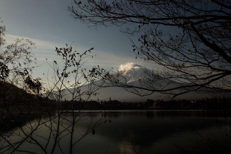 Mt. Fuji in the