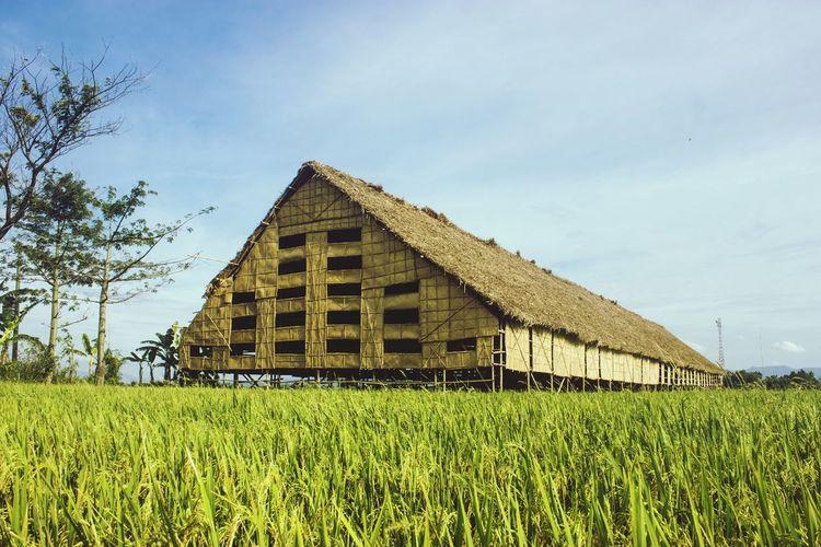 Home Of Tobbaco Klaten Indonesia