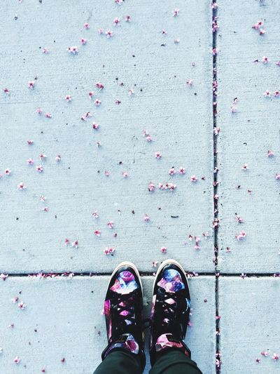 Low section of person surrounded by small cherry blossoms on footpath
