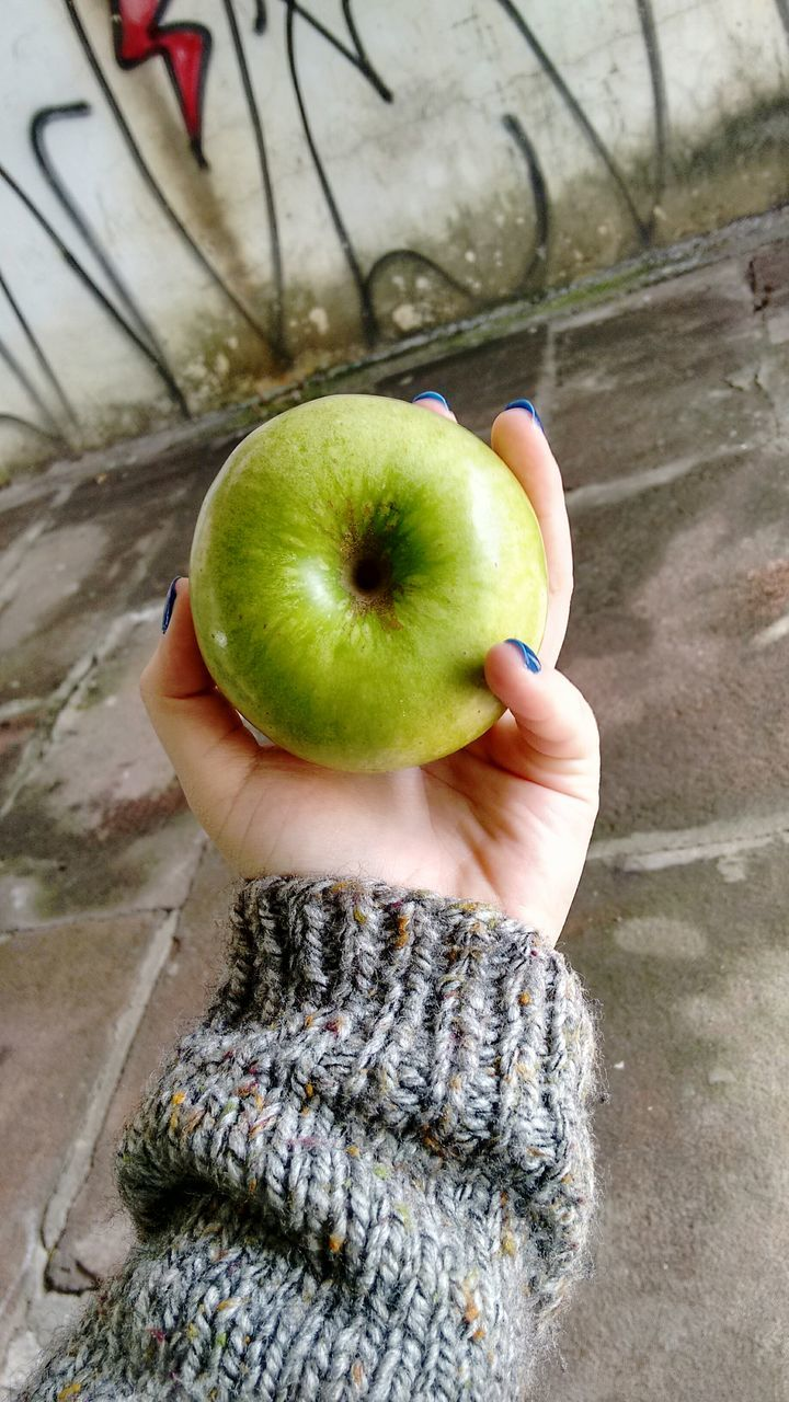 High Angle View Of Hand Holding Apple