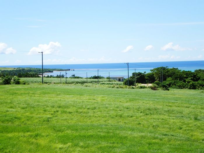 Ishigaki  Grassland & Sea