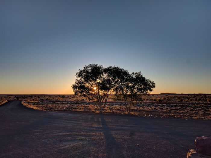🌐 Australie 🌐 Nexus5x Sunset Silhouette Nature Beauty In Nature Sky Outdoors Scenics Shadow No People Moon Landscape Clear Sky Night Tree Pixelated Voyager EyeEm Nature Lover Deserts Around The World Desert EyeEm Best Shots - Nature Space Voyage Cloud - Sky Tree Nature Tranquility Tranquil Scene Day Summer Sports
