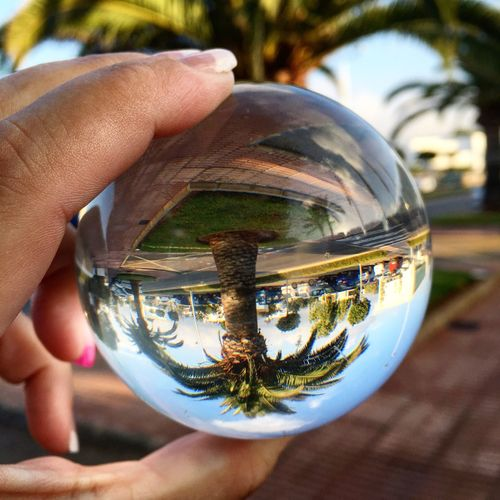Cropped image of hand holding crystal ball with reflection
