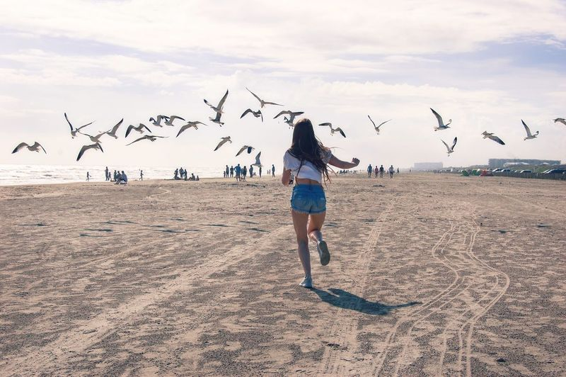 Beach Sand Birds Seagulls Real People Outdoors Sky Beauty In Nature Girl Run Texas Port Aransas Full Length Young Adult Real Life Nature Holiday