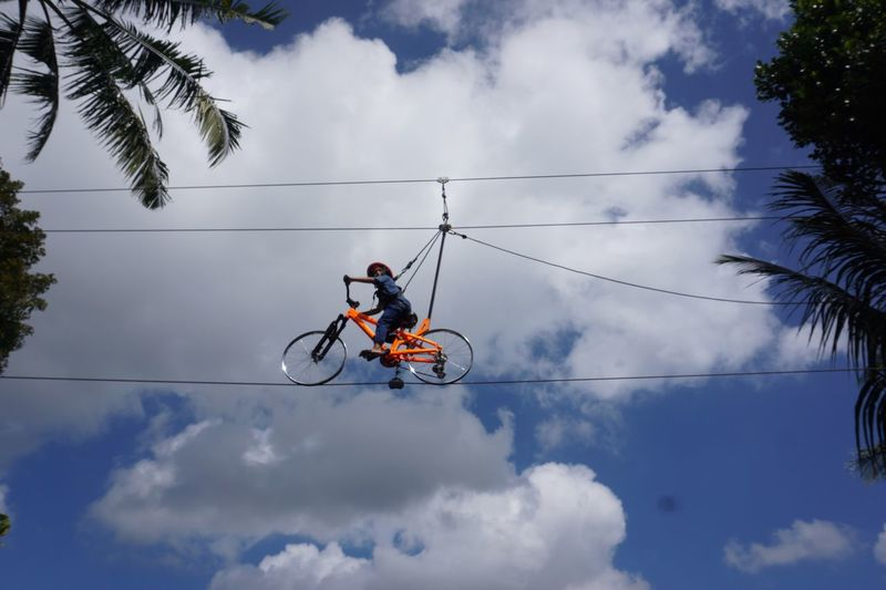 EyeEm Selects Cloud - Sky Sky Low Angle View Tree Extreme Sports This Is Strength Real People Men One Person Sport Leisure Activity Day Transportation Nature Skill  Warning Sign Plant Stunt Bicycle Communication Mid-air