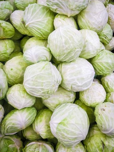 Artichoke Brussels Sprout Backgrounds Dim Sum Full Frame Vegetable Steamed  Raw Food Dieting High Angle View Farmer's Market Low Carb Diet Gluten Free Santa Fe Province Farmer Market Rosario Organic Vegetable Garden Radish Cauliflower Organic Farm Antioxidant Street Market Community Garden Leaf Vegetable Farmer Kale Cabbage Root Vegetable Market Stall