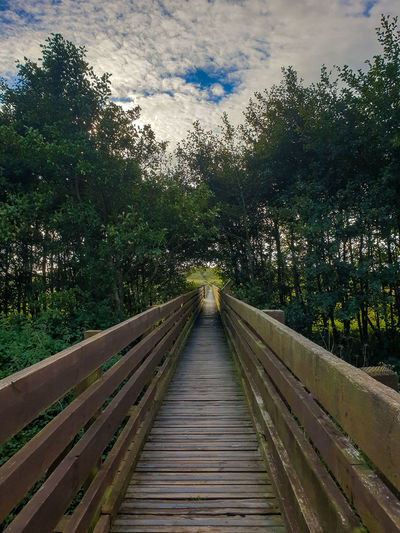 Wooden footbridge along trees and plants against sky