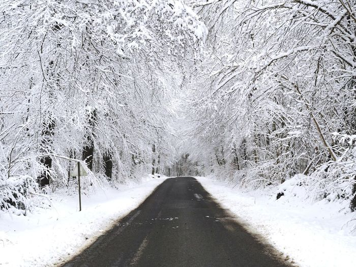 Winter Snow Road No People Outdoors Day Nature Cold Temperature Tree Sky Miles Away Belgium POV Freedom Alone Time Freshness Beauty In Nature Nature Photography Nature Collection Nature's Diversities Nature Collection Love Tree EyeEm Selects Let's Go. Together. Sommergefühle