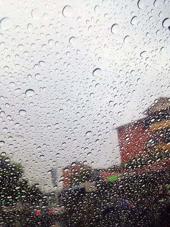 Lidcombe drizzle IPhoneography