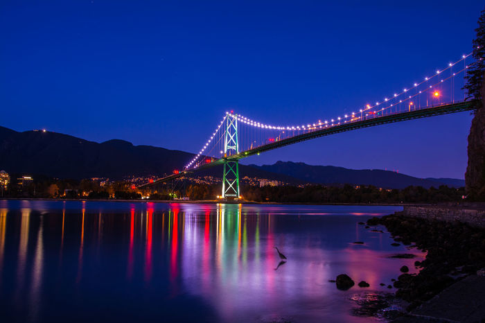 A heron looks for dinner under the lights of Lions Gate Bridge on a not so stormy night.. ISO100 F8 57s 24mm Vancouver Vancityhype Vancouver BC Vancouverofficial VancouverisawesomeWater Illuminated Connection Blue Tranquil Scene Night Clear Sky Architecture Built Structure Reflection Bridge - Man Made Structure Engineering Tranquility Dusk Suspension Bridge Waterfront Calm Scenics Ocean Long