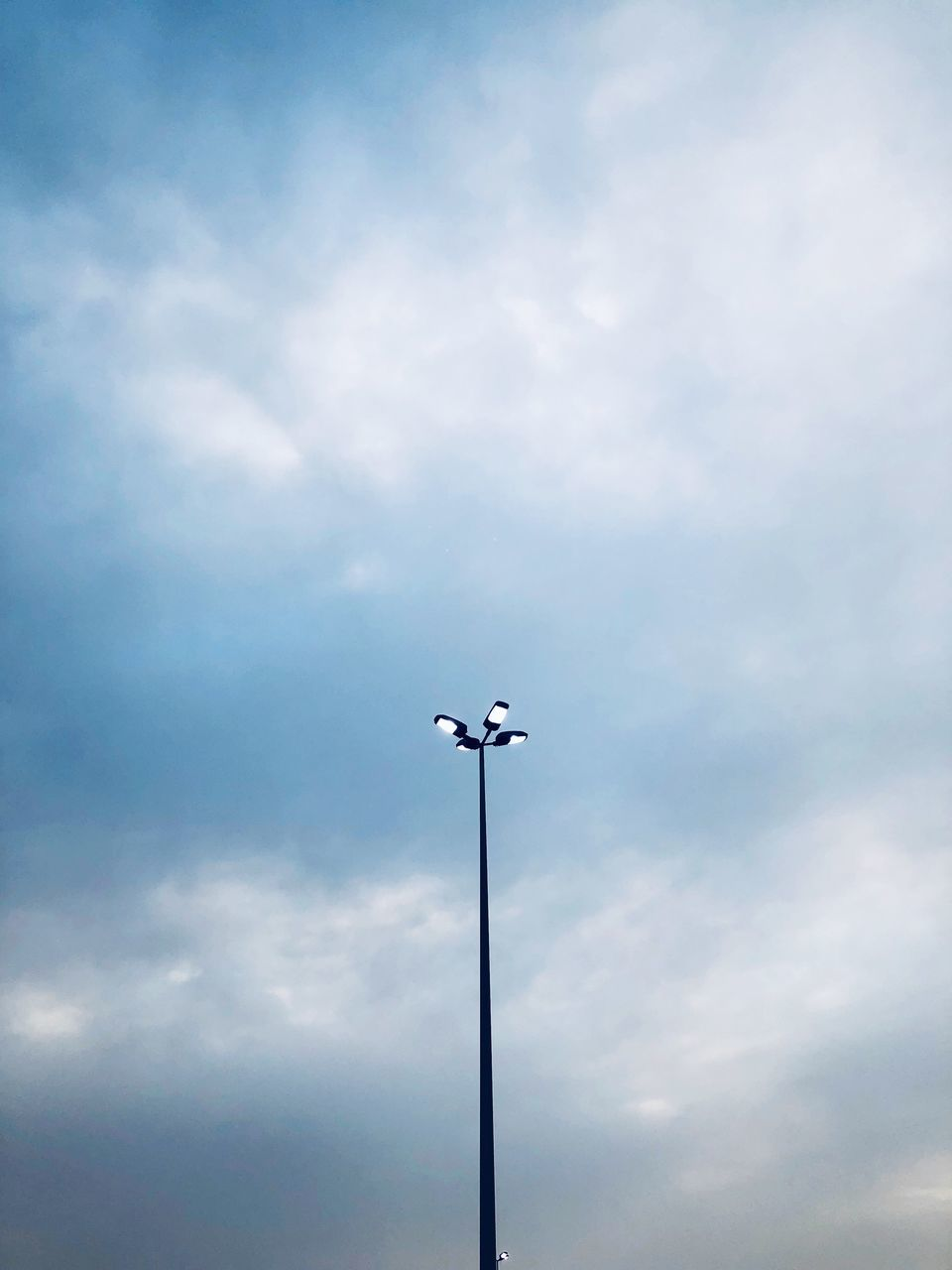 cloud - sky, sky, low angle view, lighting equipment, street, street light, no people, nature, day, floodlight, outdoors, animal themes, pole, animal, technology, bird, tall - high, vertebrate, animals in the wild, light, electricity, electric lamp