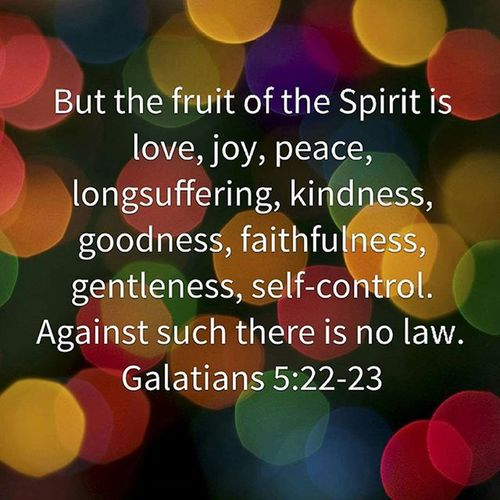 But the fruit of the Spirit is Love , Joy , Peace , Longsuffering , Kindness , Goodness , Faithfulness  , Gentleness , self-control. Against such there is no law. Galatians 5:22-23 NKJV