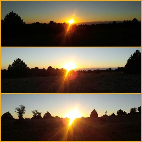 Phases  of a Sunrise Hunting the Moment Huntingseason